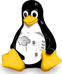 Linux Server Installation